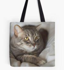 Desert Cat Tote Bag