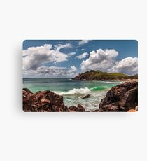 Cabarita Headland Canvas Print