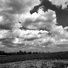 The sky speaks volumes by vigor