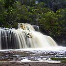 Irrawong Reserve - rain, hail or shine by Doug Cliff