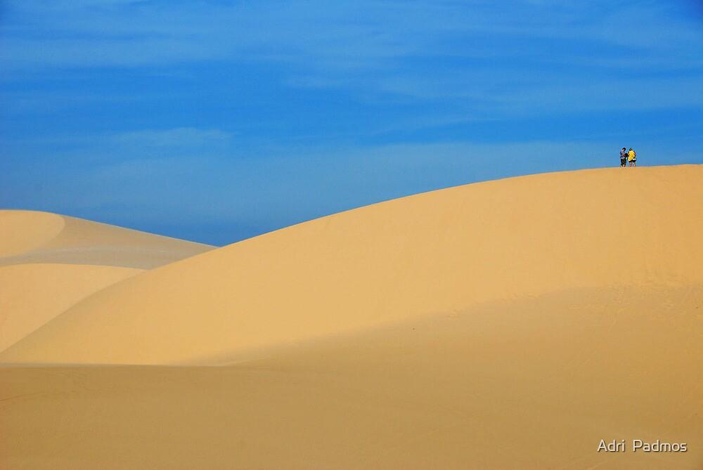 A dune walk..... by Adri  Padmos