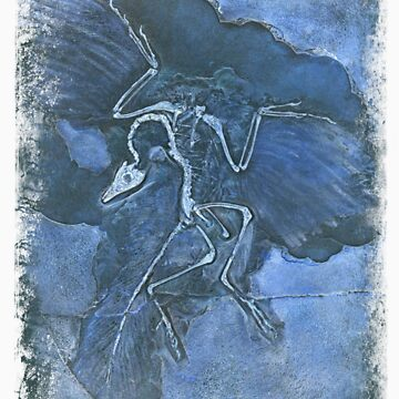 archaeopteryx in blue by andy-jones