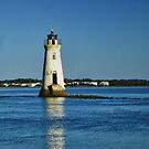 Cockspur Island Lighthouse by Penny Fawver