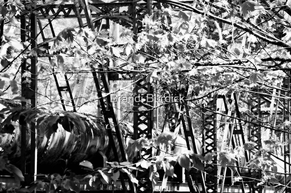 steel bridge grown over~ by Brandi Burdick