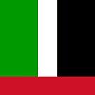 United Arab Emirates Flag by pjwuebker