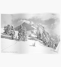 Snow Waves Poster