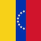 Venezuela Flag by pjwuebker