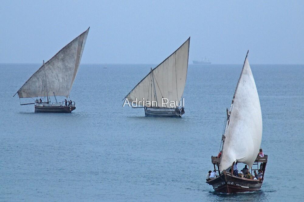 The Dhows of Zanzibar by Adrian Paul