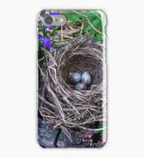 Bird nest in the garden with eggs iPhone Case/Skin
