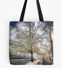 Brookline, MA. Just another winter day. Tote Bag