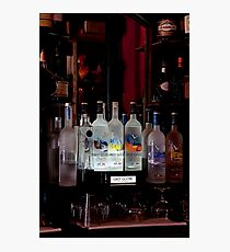 Grey Goose Photographic Print