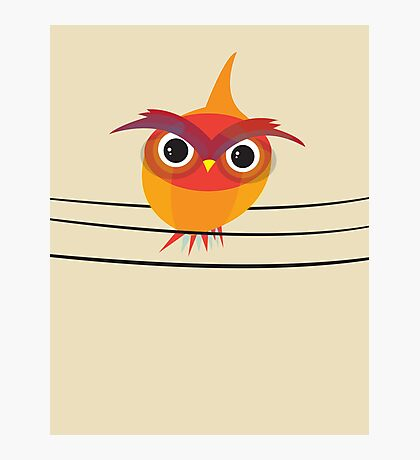 Owl on a Wire Photographic Print