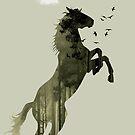 Arabian Nights by Vin  Zzep