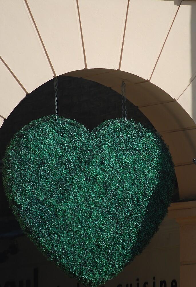 Envious Heart by peterrobinsonjr