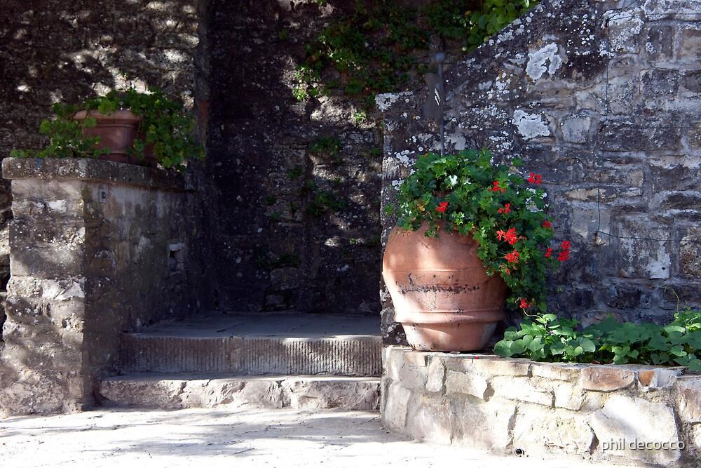 Stone Walk by phil decocco