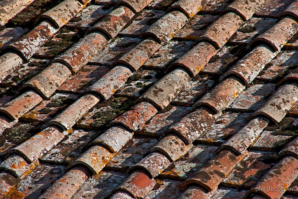 Mottled Tiles by phil decocco