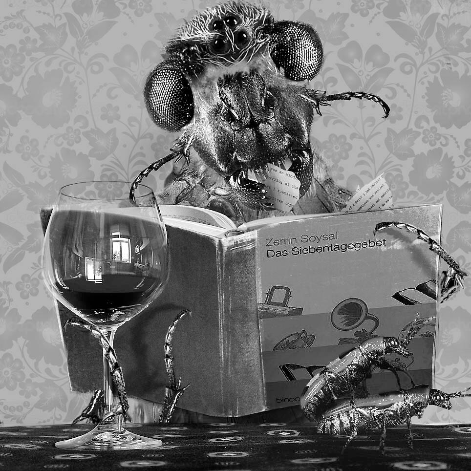 Men don't read! by Farawayjoe