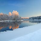 The End of a Beautiful Day  by Remo Savisaar