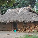 Village Hut, Zanzibar, Tanzania by Adrian Paul