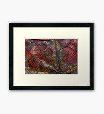 Autumn decay  Framed Print