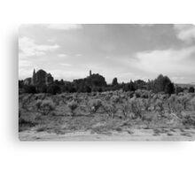 Black and White Kodachrome State Park,UT Canvas Print