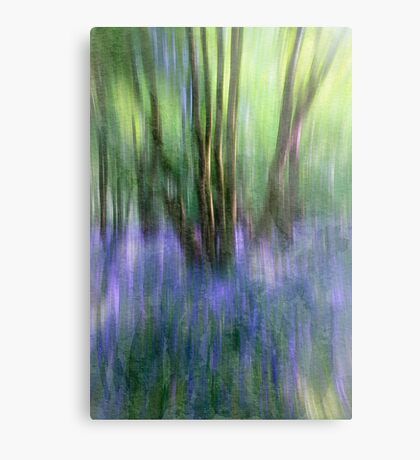 Essence Of Bluebells Metal Print