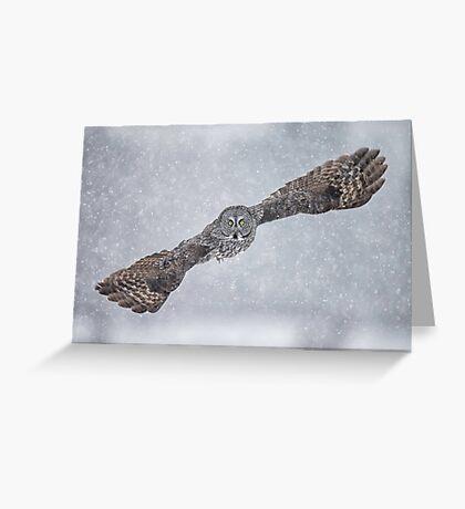 Flight of the Phantom 2 Greeting Card