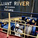 Brilliant River - Newcastle Harbour NSW Australia by Bev Woodman