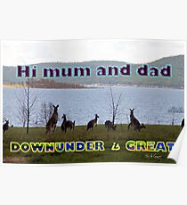 Downunder is Great Poster