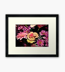 Pink and Yellow Rose Framed Print
