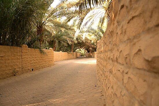 Al Qattara Oasis in Al Ain by Ian Mitchell