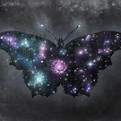 Cosmic Butterfly  by Terry  Fan