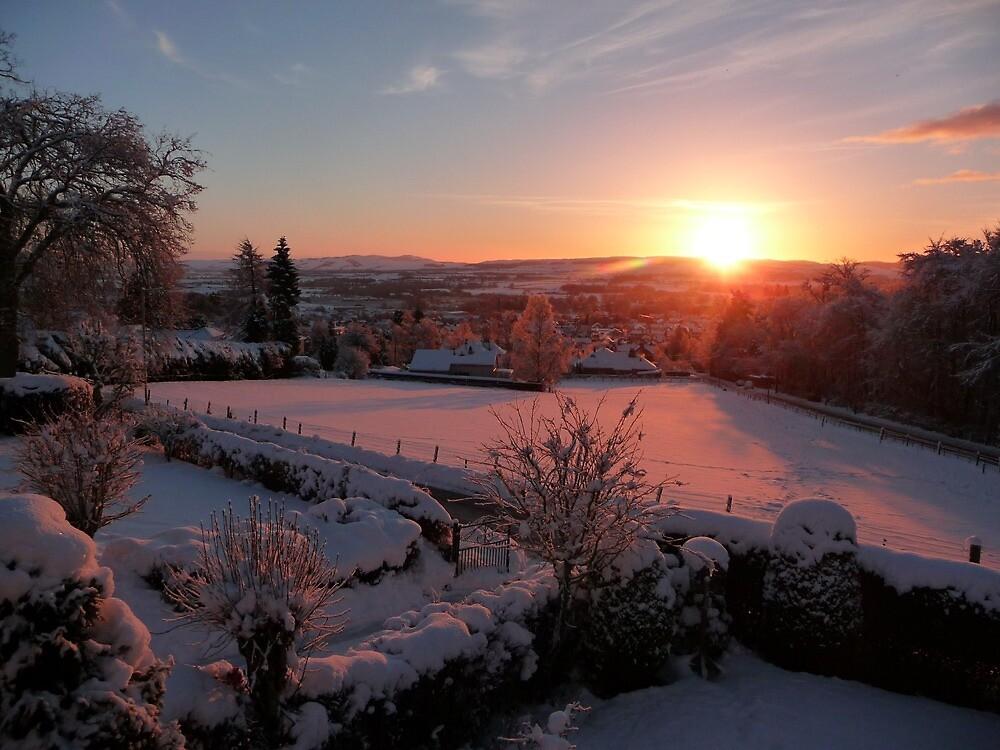 Shimmering Dawn by Braedene