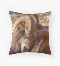 Crunch Time! Throw Pillow
