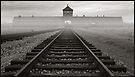 Death Gate - Auschwitz Birkenau - early morning by Peter Harpley