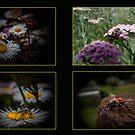 Bugs n Bees by Josie Jackson