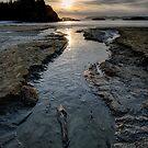 The Stream at McKenzie Beach by toby snelgrove  IPA