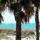 Clearwater Beach Sail Boats by Diane Trummer Sullivan