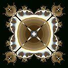 Rippling Water Lights Mandel's K by Hugh Fathers