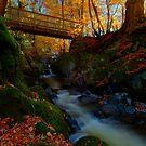 Autumn bridge by Beverly Cash
