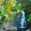 Hogarth Falls ll by Glen Johnson