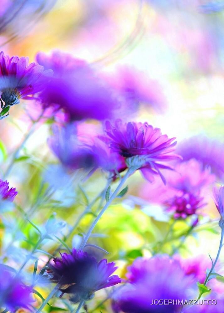 floral fantasy.. by JOSEPHMAZZUCCO