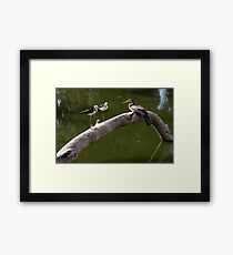 Two Stilts and a Dart Framed Print