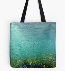 Mad Fish Bay Underwater Tote Bag