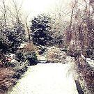 Snowy Garden by babibell