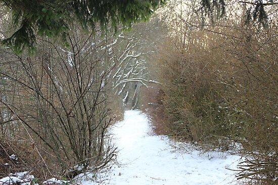 Path by MimiB