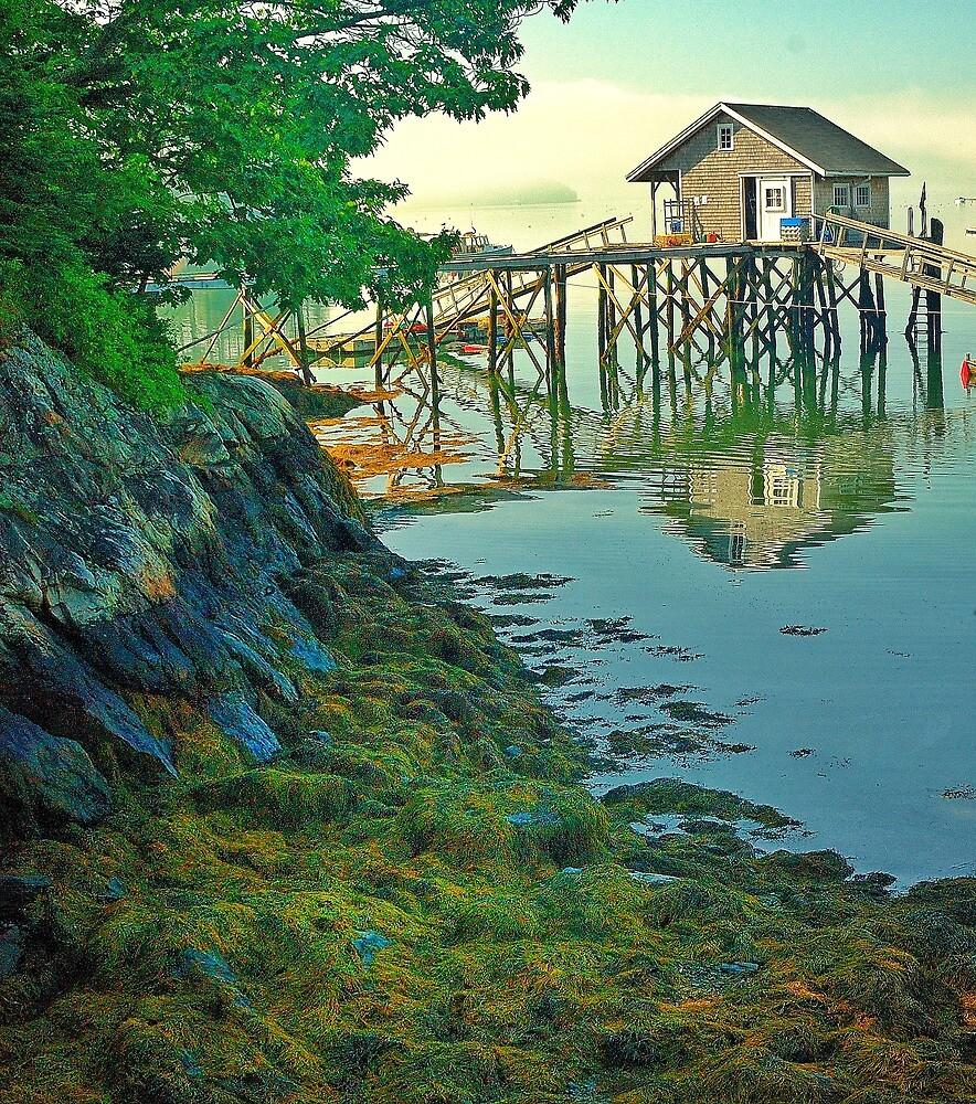 Damarascotta, Maine by fauselr