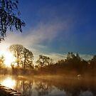 Misty morning by Beverly Cash