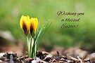 Blessed Easter - Crocuses (Greeting Card) by Tracy Friesen