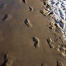 Footprints on the Sand, Tobago by Wayne Gerard Trotman